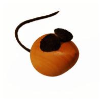 Magnetmaus-Buchsbaum